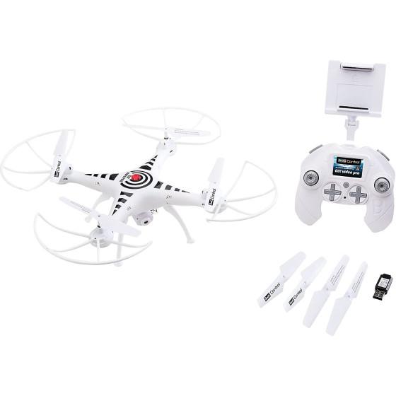 SPARROW HAWK (160-200) -...